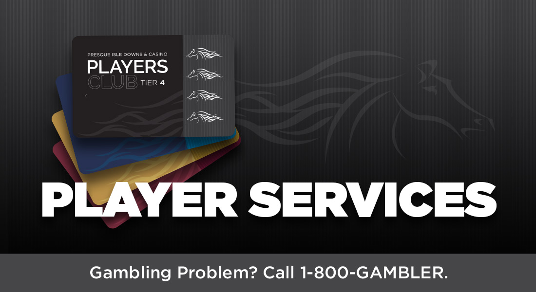 Player_Services_1100x600_services